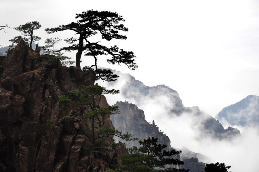 中国の黄山の写真
